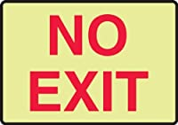 Accuform Signs MEXT502GF Lumi-Glow Flex Adhesive Safety Sign Legend NO EXIT 10 Length x 14 Width x 0.010 Thickness Red on Glow [並行輸入品]
