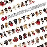THE DOG オールスター 2008年カレンダー 画像