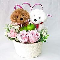 花 誕生日プレゼント 女性 彼女 誕生日 プレゼント 女性 花 ギフト プリザーブドフラワー バラ フラワーアレンジメント トイプードル のペア