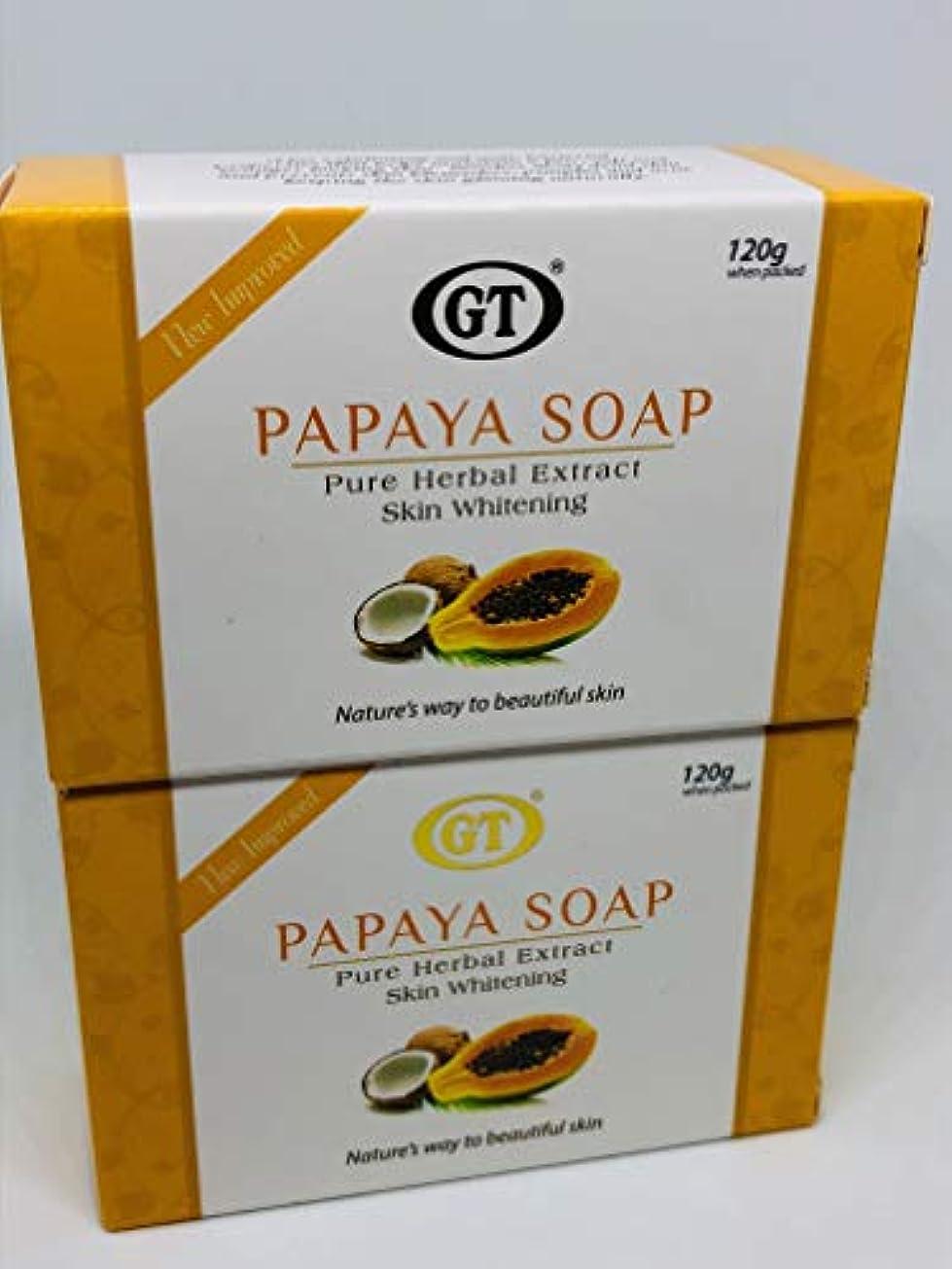 硫黄抑止する溶かすGT COSMETICS 無添加 ココナッツ&パパイヤ ソープ 120g×2PIECESセット 正規輸入代理店