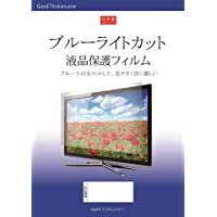 ブルーライト カット 液晶 TV 保護 フィルム 東芝 REGZA 55BZ710X [55インチ] 機種で使える 液晶保護フィルム