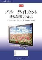 ブルーライト カット 液晶 TV 保護 フィルム 日立 Wooo L42-GP1 [42インチ] 機種で使える 液晶保護フィルム