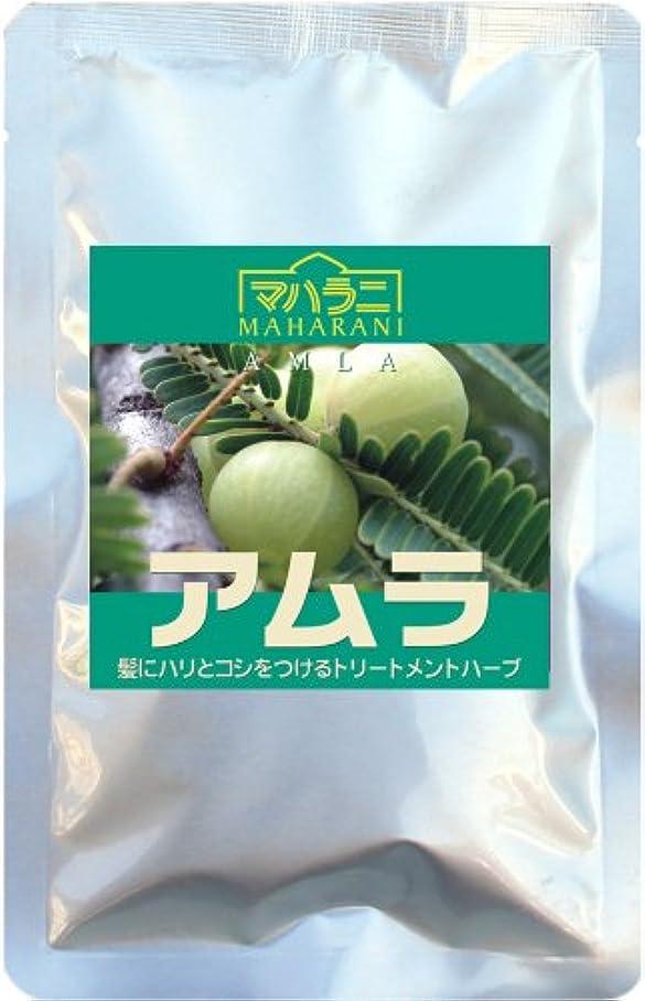ジャムトレード甘やかすマハラニ アムラ 真空パック (100g)