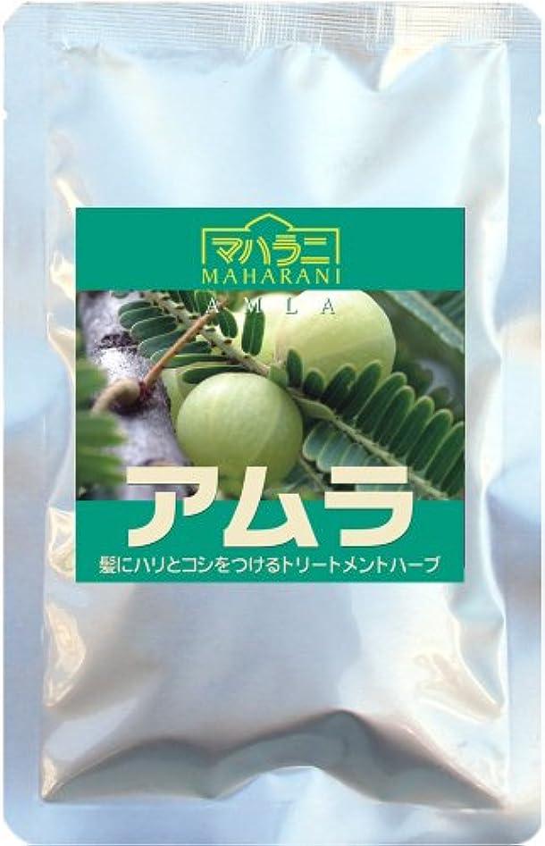 のヒープ古くなった液体マハラニ アムラ 真空パック (100g)