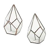 F Fityle 2個 透明ガラス 幾何学 植物ホルダー 多肉植物鉢 テラリウム 展示箱 スタイリッシュ
