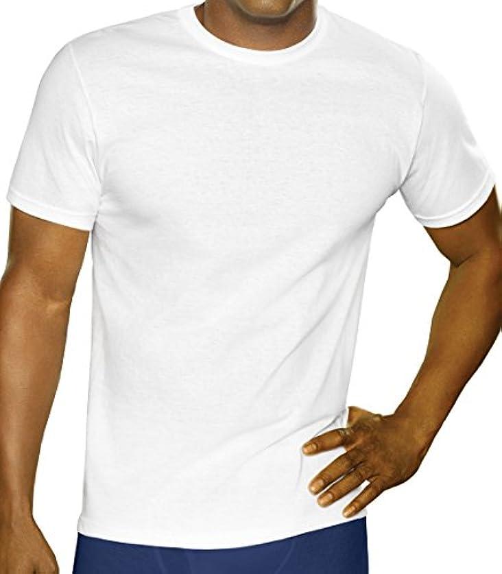 遅い薬対称(フルーツオブザルーム)FRUIT OF THE LOOM ホワイトクルー3Pパック Tシャツ 2727