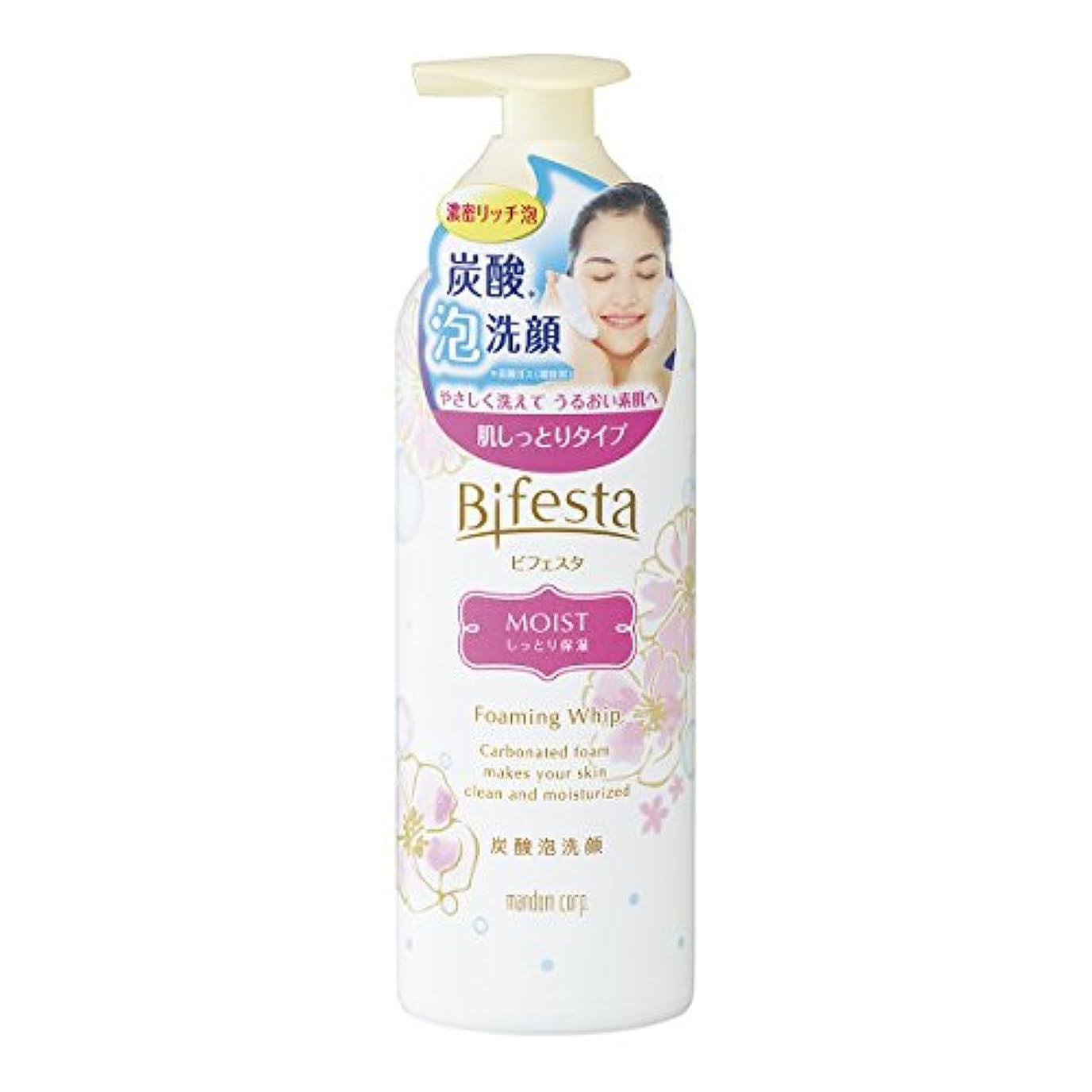 聖人最小化する芸術ビフェスタ 泡洗顔 モイスト 180g