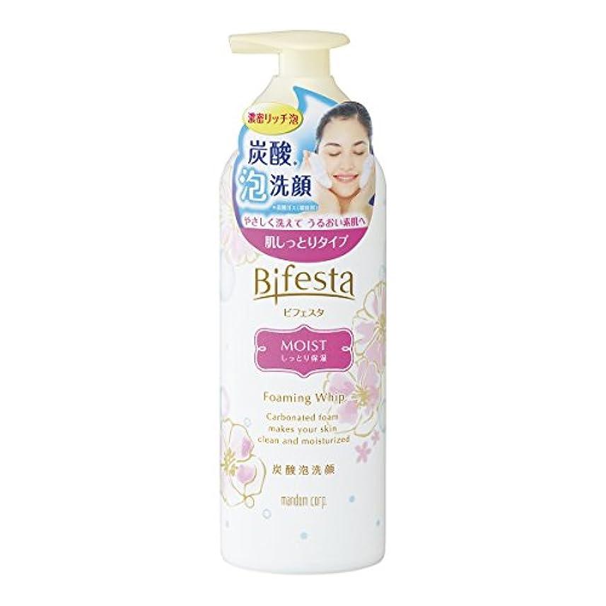 ウィザード超高層ビル満州ビフェスタ 泡洗顔 モイスト 180g