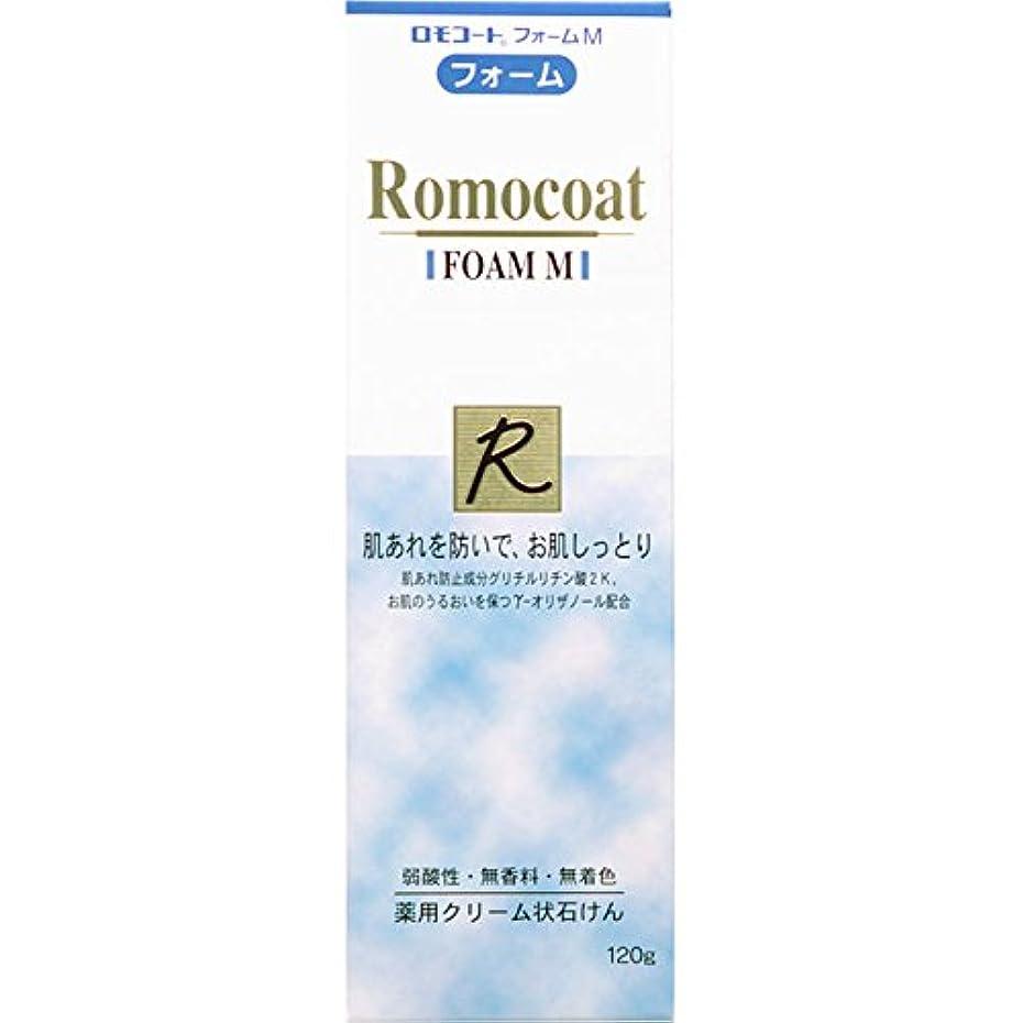 行動香ばしい適応ロモコートフォームM 120g【医薬部外品】