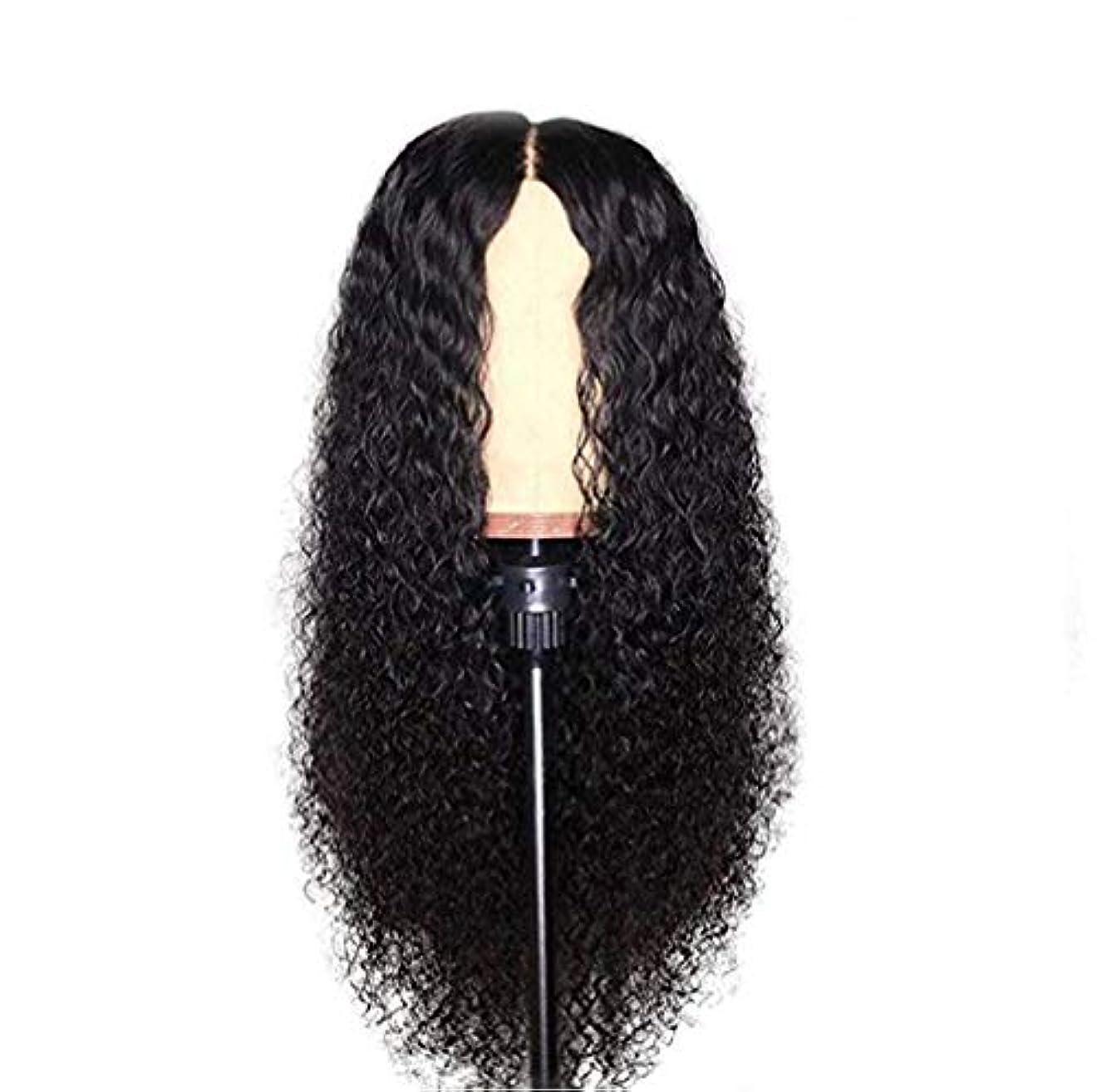 重要な役割を果たす、中心的な手段となるジョブ楽しむ女性レース前頭かつら人毛ブラジル髪かつら水波レースフロントかつらグルーレスレースかつら人間の髪かつら未処理バージン髪