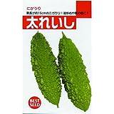 ゴーヤ 種 【 太レイシ 】 種子 小袋