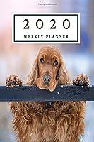2020 Weekly Planner: 2020 weekly Cocker Spaniel planner | Jan 1, 2020 to Dec 31, 2020 | Weekly Organizer / Diary