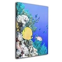 ブルームン アートフレーム パネル 40×50 魚 海 飾り絵