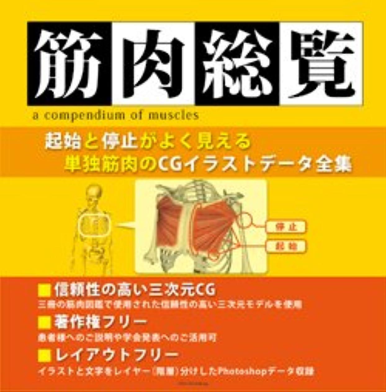 著作権フリー筋肉イラスト集 筋肉総覧DVD-ROM