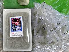 静岡県産 駿河湾由比 刺身で食べれる 生しらす