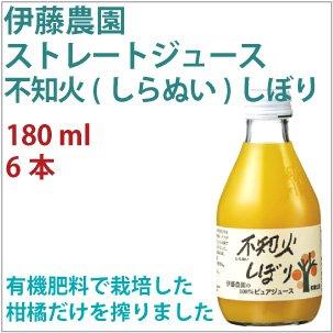 果汁100% ストレートジュース 不知火(しらぬい)しぼり 180ml 6本