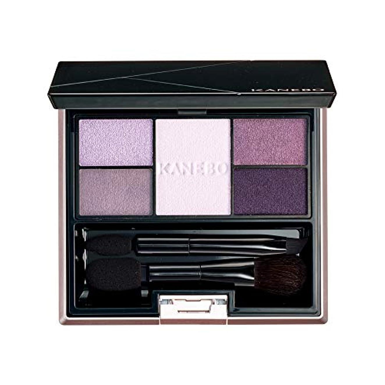見物人足音きらめくKANEBO(カネボウ) カネボウ セレクションカラーズアイシャドウ 06 Elegant Lavender アイシャドウ