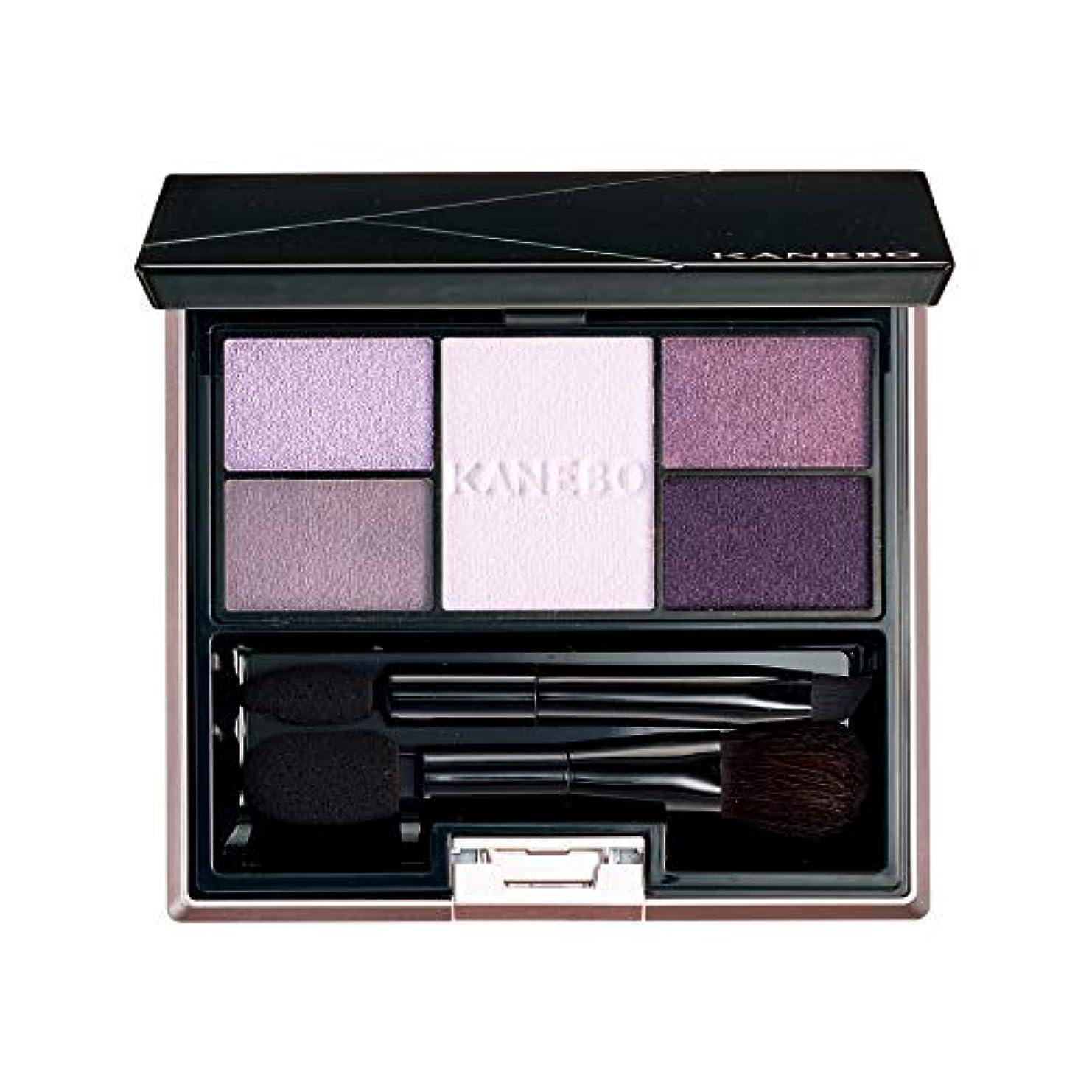 一般的に言えば保証する禁止KANEBO(カネボウ) カネボウ セレクションカラーズアイシャドウ 06 Elegant Lavender アイシャドウ
