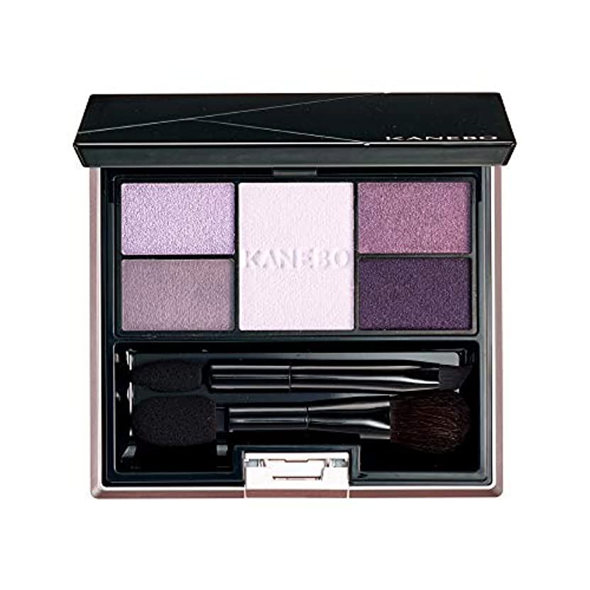 雇用者音ピストルKANEBO(カネボウ) カネボウ セレクションカラーズアイシャドウ 06 Elegant Lavender アイシャドウ