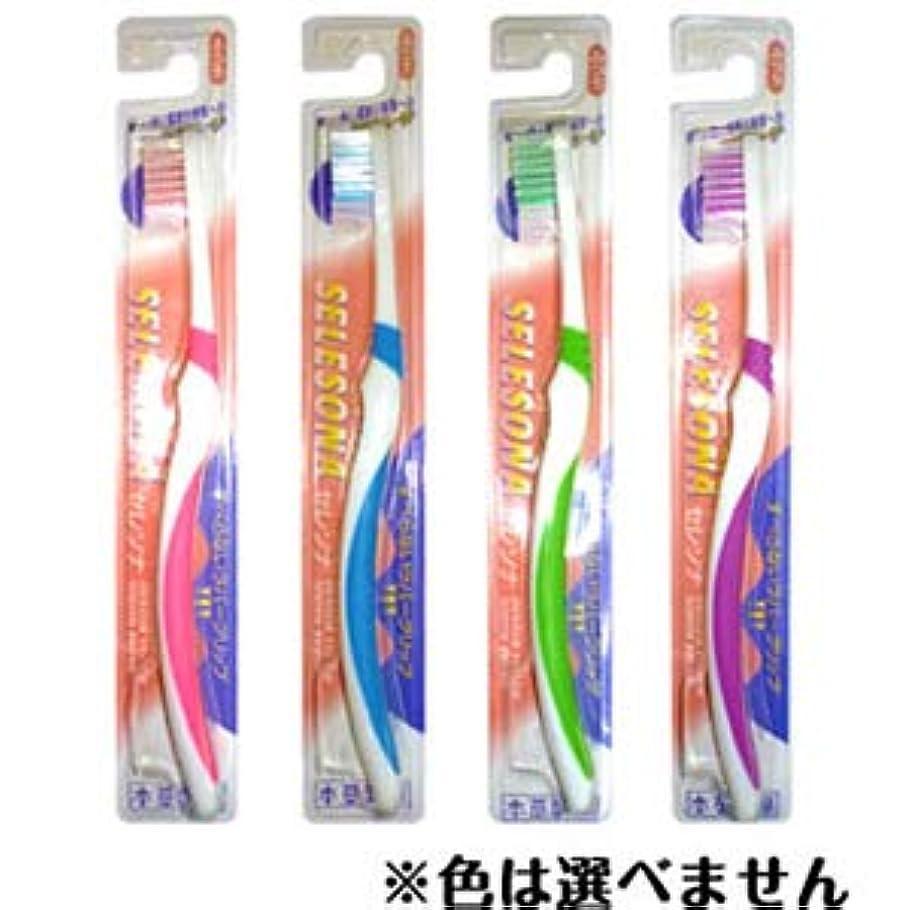 真鍮スモッグ前進本草製薬 セレソナ 歯ブラシ 毛の硬さ:ふつう (1本入)