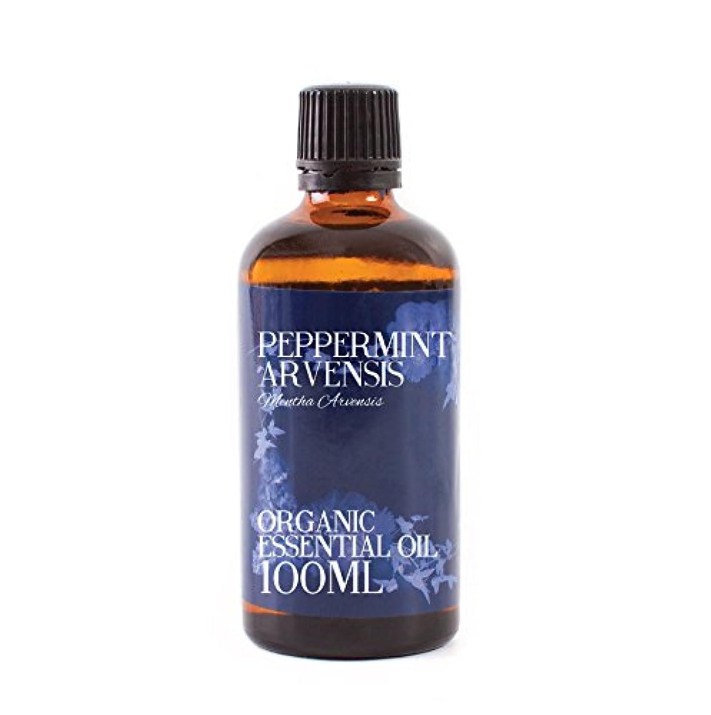 ライオン聴覚孤独なMystic Moments | Peppermint Arvensis Organic Essential Oil - 100ml - 100% Pure