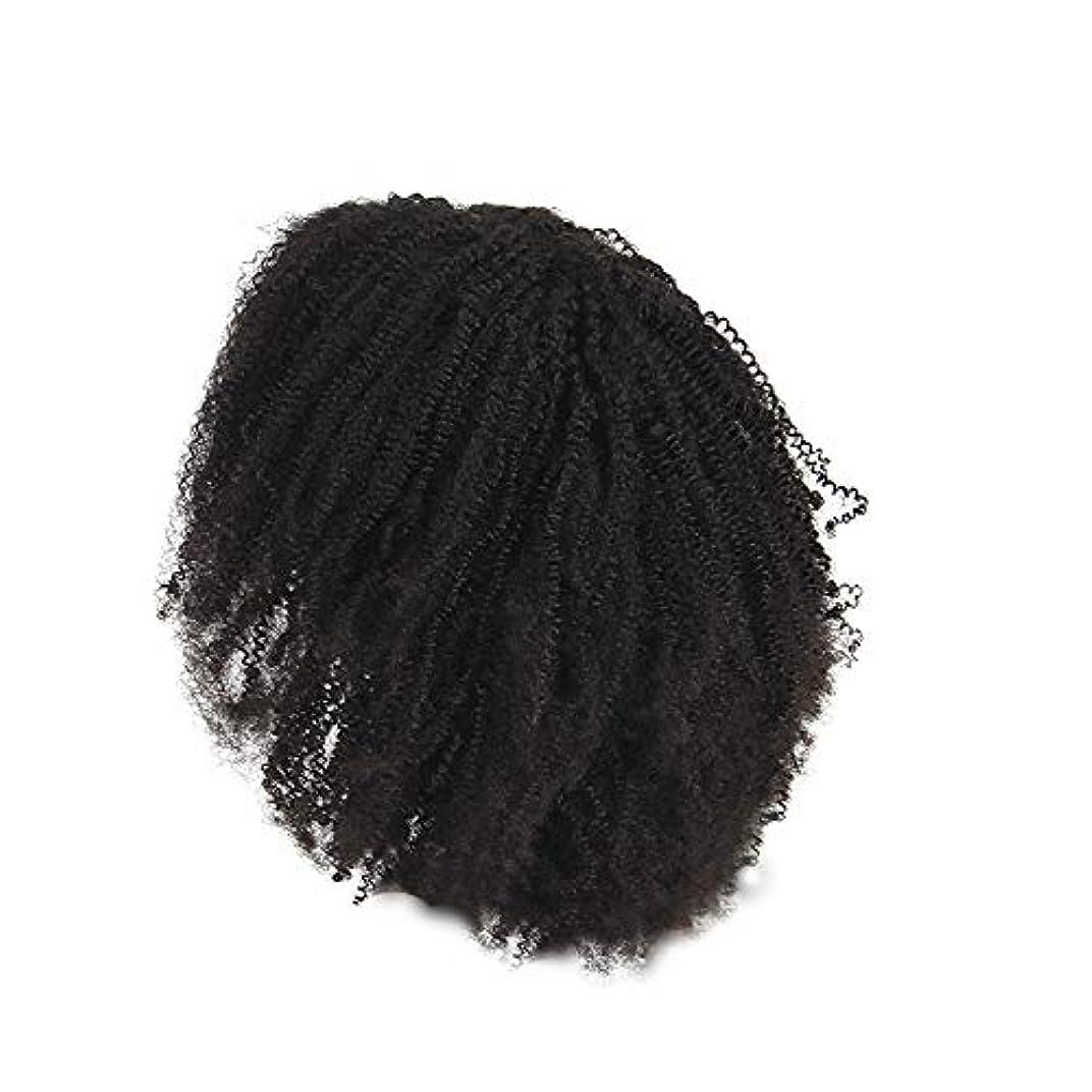 かつらレース化学繊維爆発ヘッド小体積短い髪かつらの前に