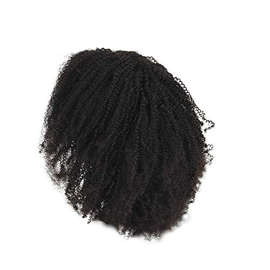 所持選ぶ浸漬かつらレース化学繊維爆発ヘッド小体積短い髪かつらの前に