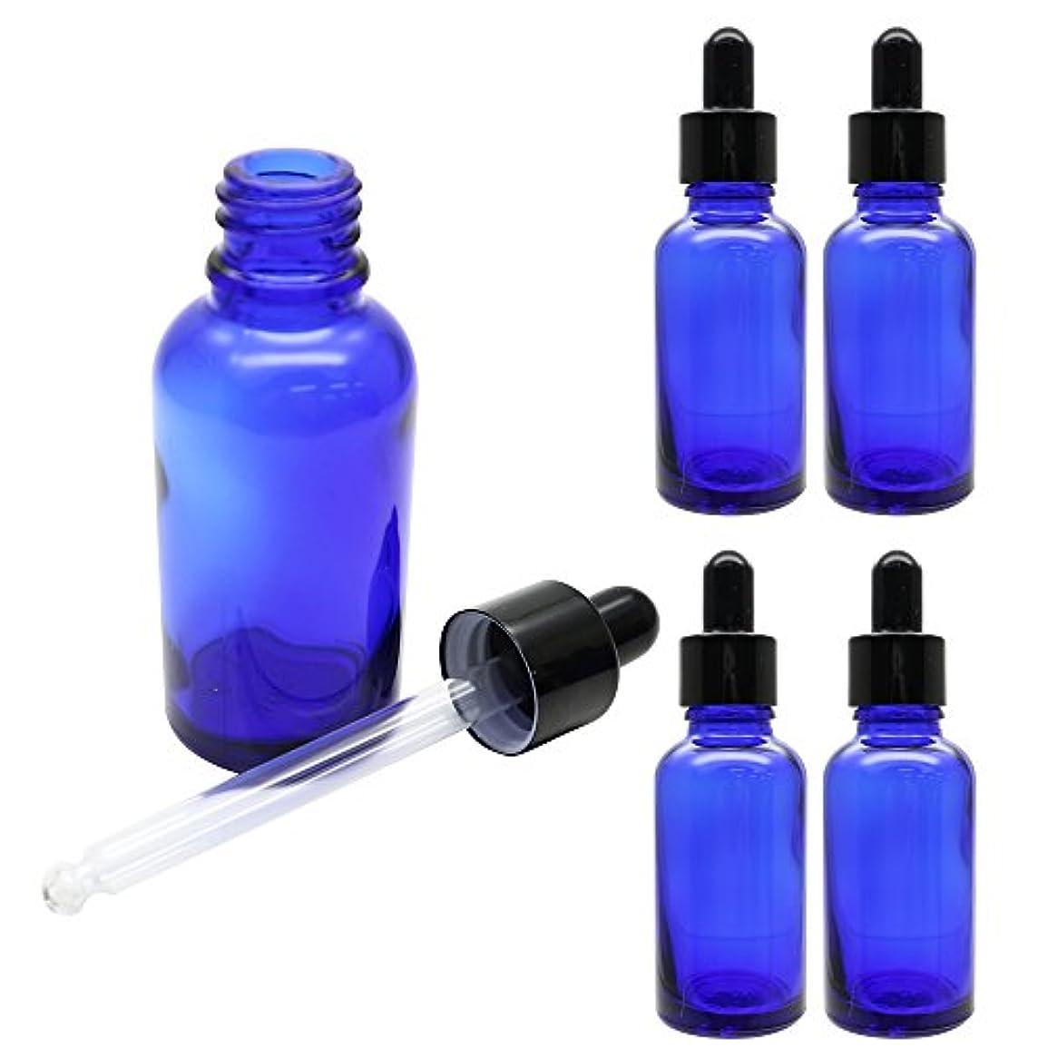 推測紫のヘッドレス【yanyan0207】 スポイト付き 遮光瓶 5本セット 30ml 高さ10cm ガラス製 (ブルー)