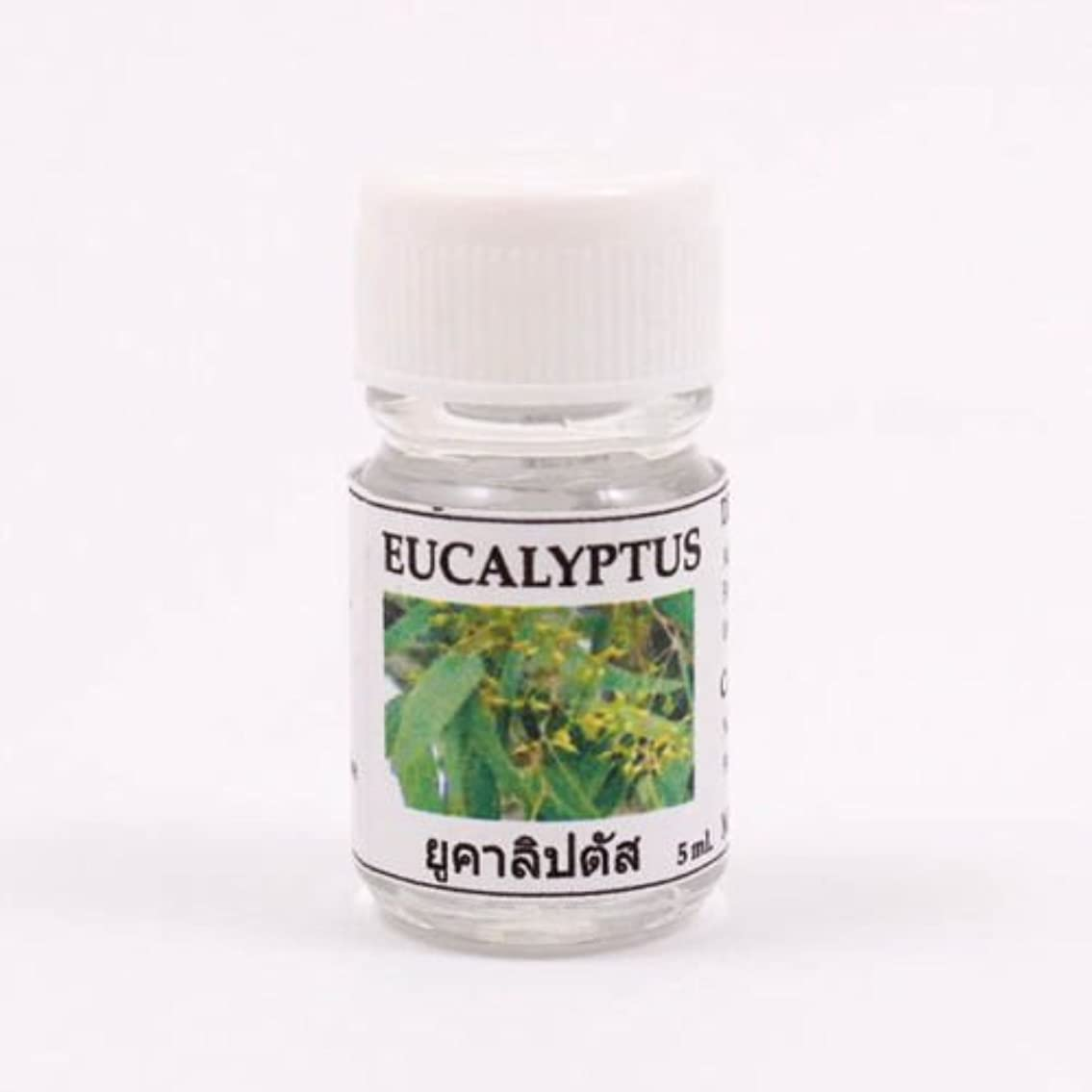 技術者差し控えるの慈悲で6X Eucalyptus Aroma Fragrance Essential Oil 5ML cc Diffuser Burner Therapy