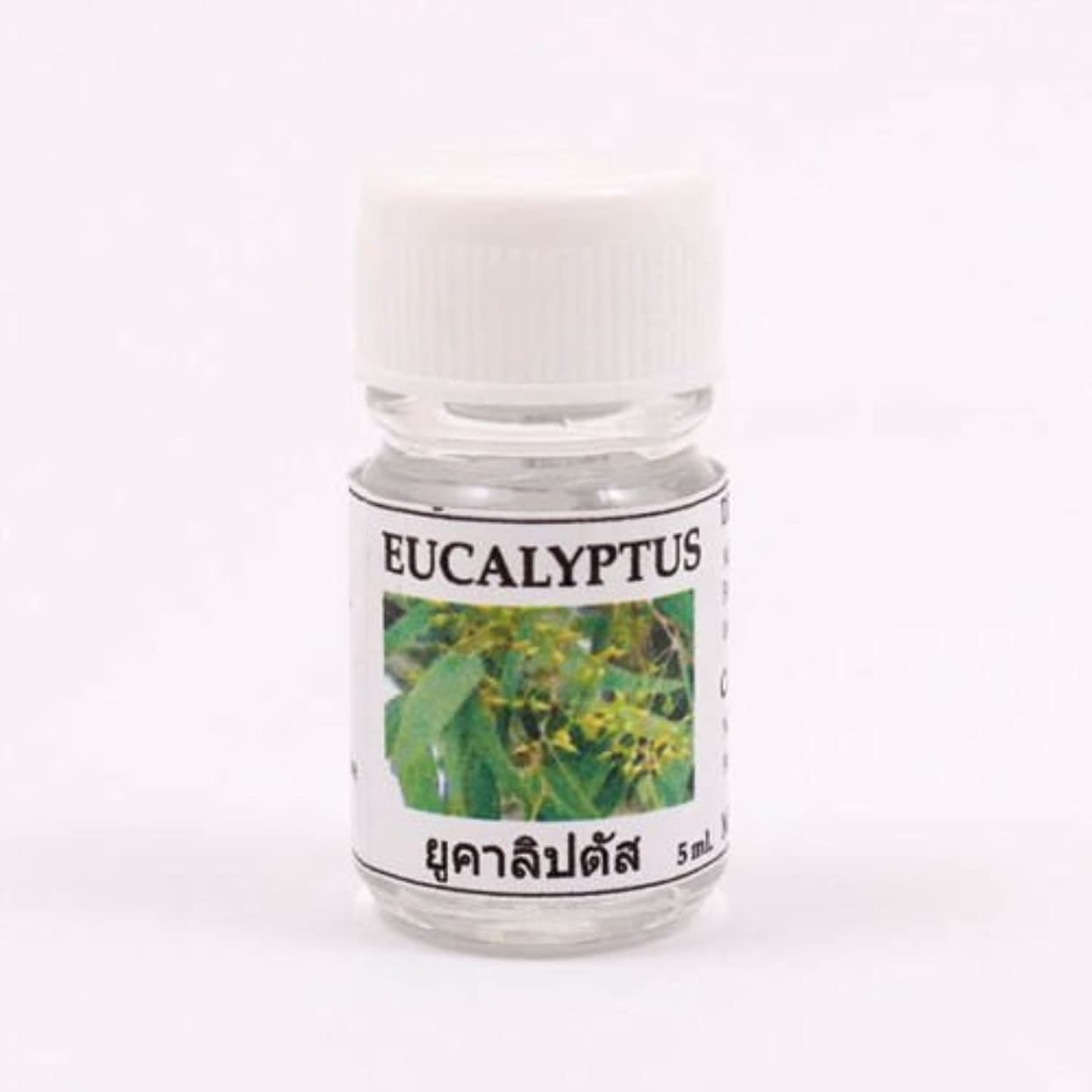 矛盾する荒廃する農民6X Eucalyptus Aroma Fragrance Essential Oil 5ML cc Diffuser Burner Therapy