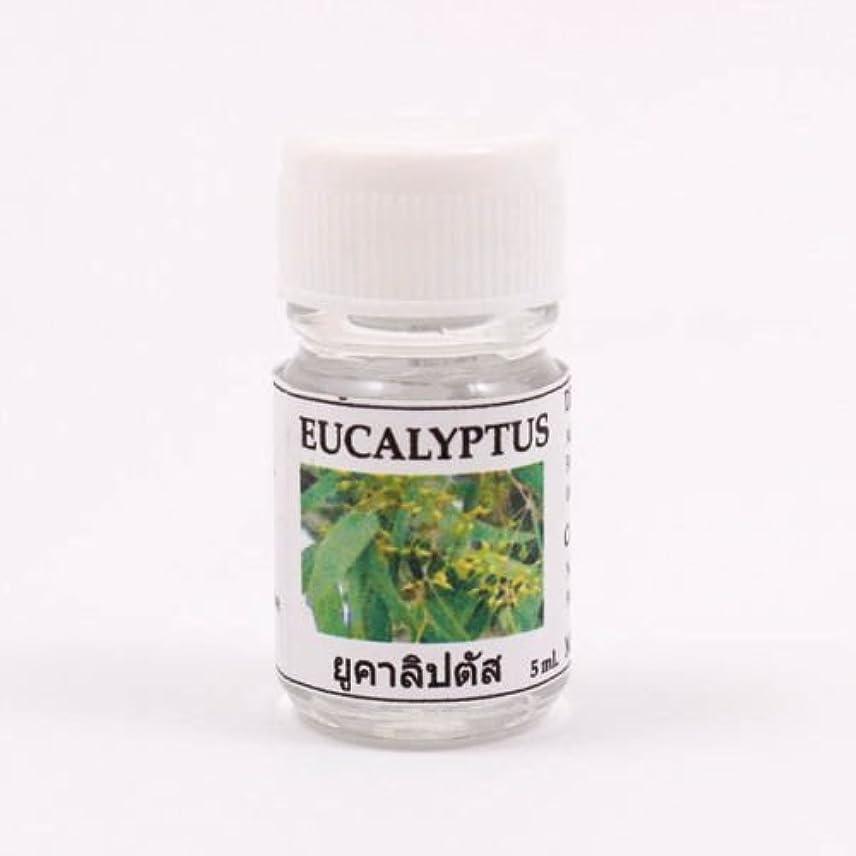 6X Eucalyptus Aroma Fragrance Essential Oil 5ML cc Diffuser Burner Therapy