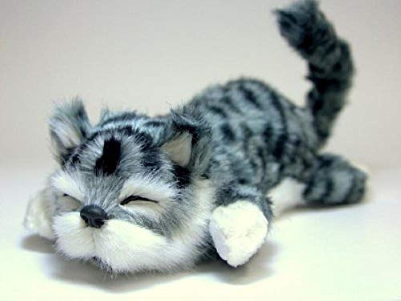 【大人気】笑って転げて猫山さん。笑う猫!猫田課長。