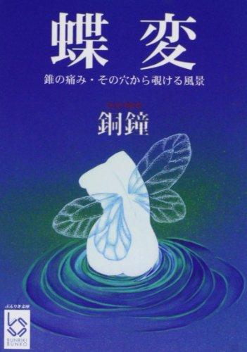 蝶変―錐の痛み・その穴から覗ける風景 (ぶんりき文庫)