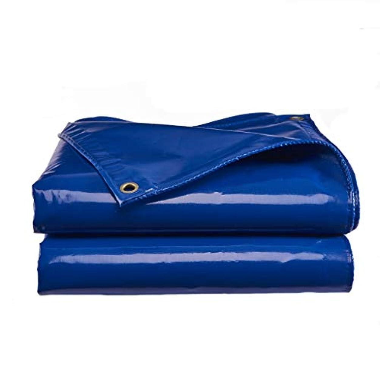 会計逆にオーニングカーペット、オーニング多目的ターポリン 耐候性、ポータブル屋外カーペットマット、カーレインUV (Size : 10mx12m)