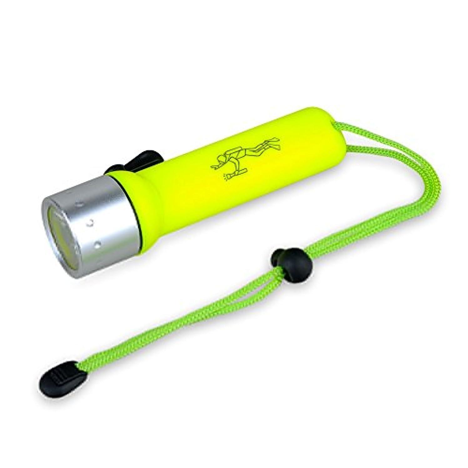 十分ではないつま先放射性GEEDIAR LED水中ライト ダイビングライト 防災懐中電灯 緊急照明 明るさ180ルーメン
