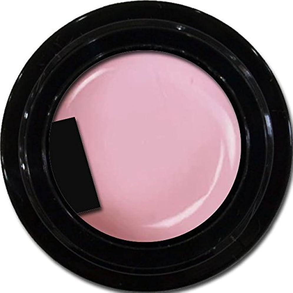 船酔い他に内部カラージェル enchant gel color gel S501 Sheer Lilac 3g/ エンチャントジェル カラージェル S501シアーライラック 3グラム