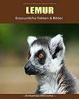 Lemur: Erstaunliche Fakten & Bilder