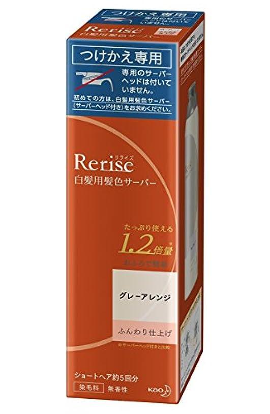 涙葉巻に対応リライズ 白髪染め グレーアレンジ (自然なグレー) ふんわり仕上げ 男女兼用 つけかえ用 190g