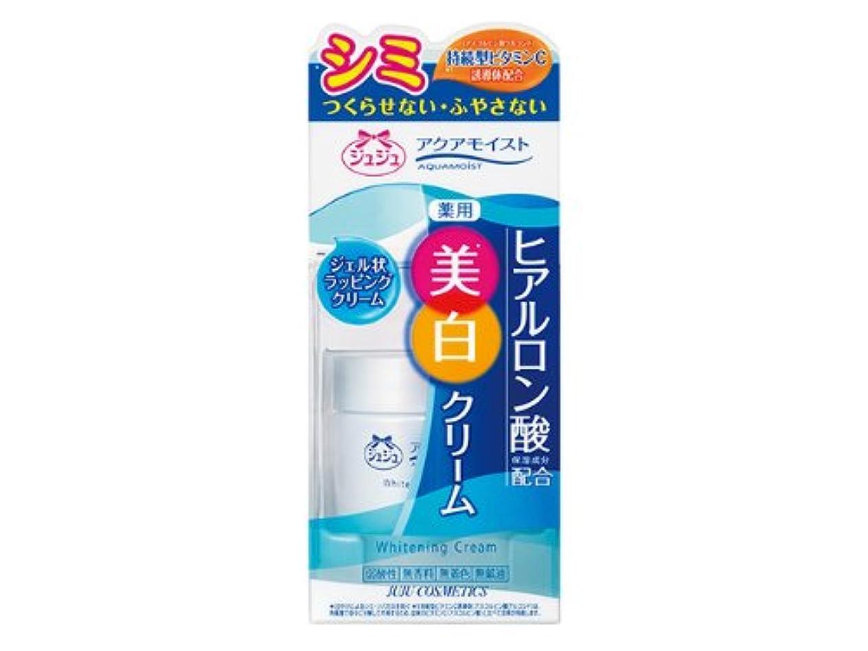 野ウサギ補助金やるアクアモイストC 薬用ホワイトニングクリームH 50g 【医薬部外品】