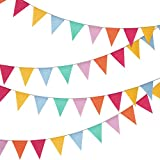 Hestya 24 Pieces Multicoloured Triangle Flags 4.8m Bunting Banner for Party Decoration