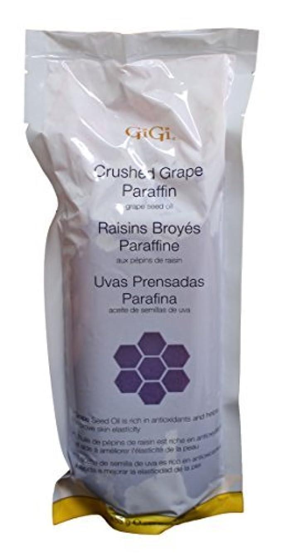 終わらせるマーク排出Gigi GG-853 Crushed Grape Paraffin Hair Removal Wax [並行輸入品]