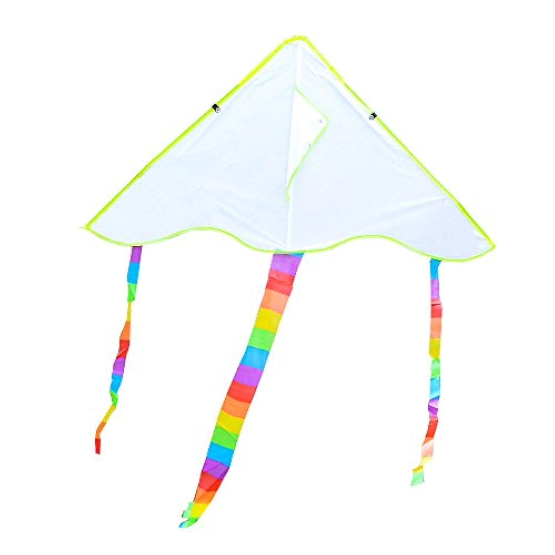 ペイントの使用、Cheap and fine、easy-fly空白Kite with Flyingツール、アウトドアフライトスポーツToys for Kids