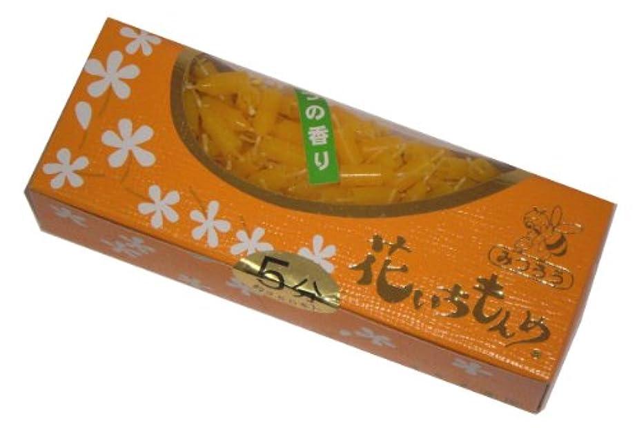 安全なジャベスウィルソン樹皮佐藤油脂のローソク 花いちもんめ みつろう 約350本 5分