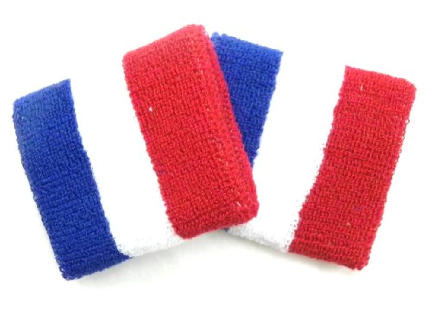 データムあえぎグリース世界の国旗リストバンド フランス2P