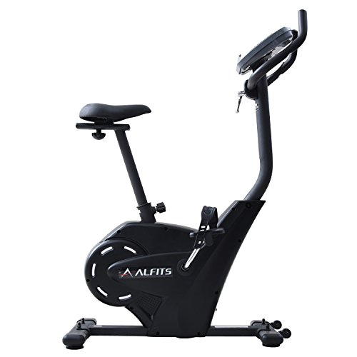 【Amazon.co.jp限定】ALINCO(アルインコ) エアロマグネティックバイク AF6200SP