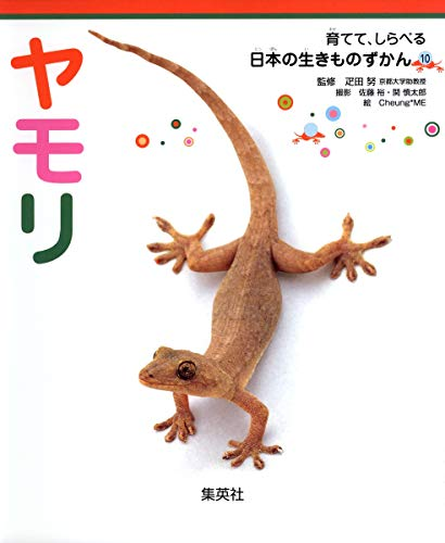 育てて、しらべる 日本の生きものずかん 10 ヤモリ (育てて、しらべる日本の生きものずかん)