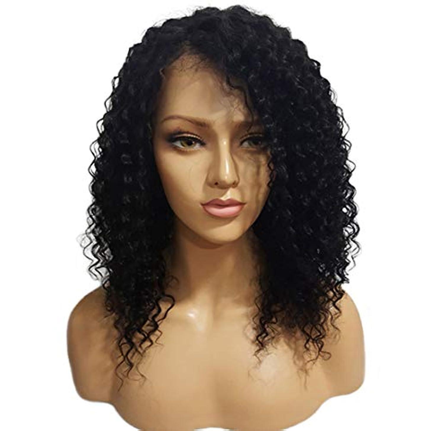 見つけた不器用ラフトYOUQIU 黒人女性のための短いオンブル茶黒カーリーヘアウィッグ女性のかつらのための合成ショートウィッグ (色 : 写真の通り)