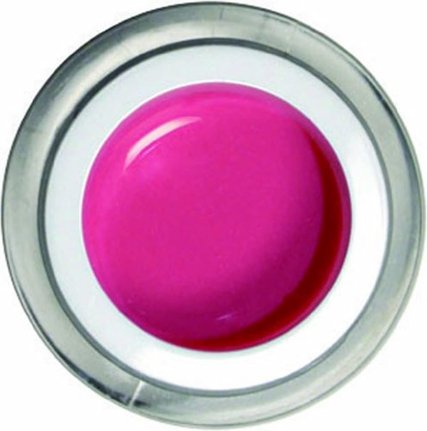 処方する有名に対してメロディコ メロディコジェル #08プリンセスピンク