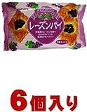 三立製菓 レーズンパイ9枚×6個入(1ケース納品) / 三立製菓