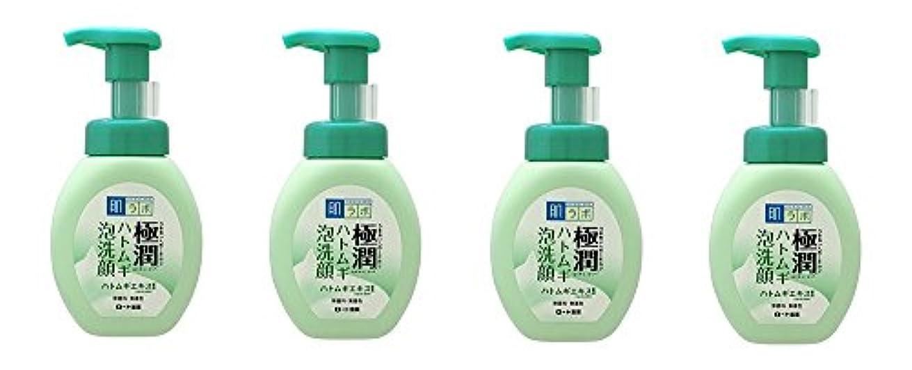 キャンプアセ男やもめ【まとめ買い】肌ラボ 極潤 ハトムギ泡洗顔 160mL×4個